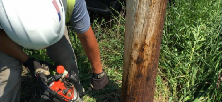 Pole Testing